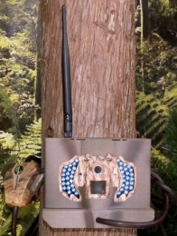 BolyGuard MG983G-30M MG984G-30M Trail Camera Security Lock Box