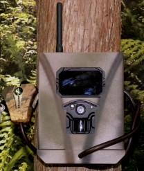 Spartan HD Trail Camera Security Lock Box