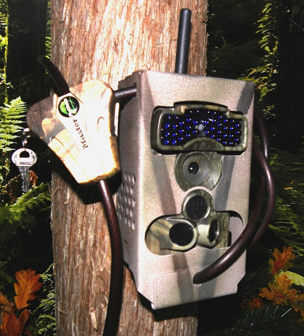 Ltl Acorn Trail Camera 5310 Security Lock Box
