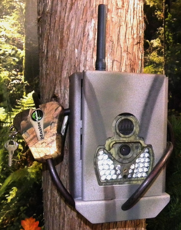 ScoutGuard SG550M SG580 SG880MK Trail Camera Security Lock Box
